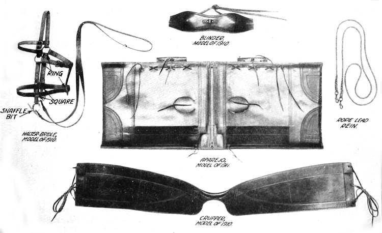 Plate VI. Pack harness.