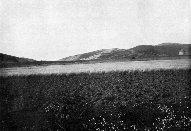 Balaclava Heights and the hill, where British 93th Highlander Regiment had a bivouac