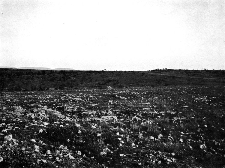View from Lancaster battery to Victoria Redoubt along forward positions of General Condrington brigade